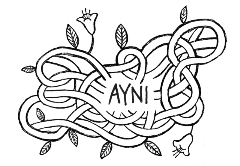 Amano Ayni  Alpakawolle